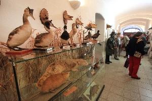 Výstava - Postopách rožmberských rybníkářů
