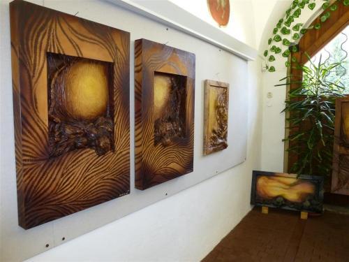 1. 7. 2015 Výstava B. Mudrová - Kožené svítání